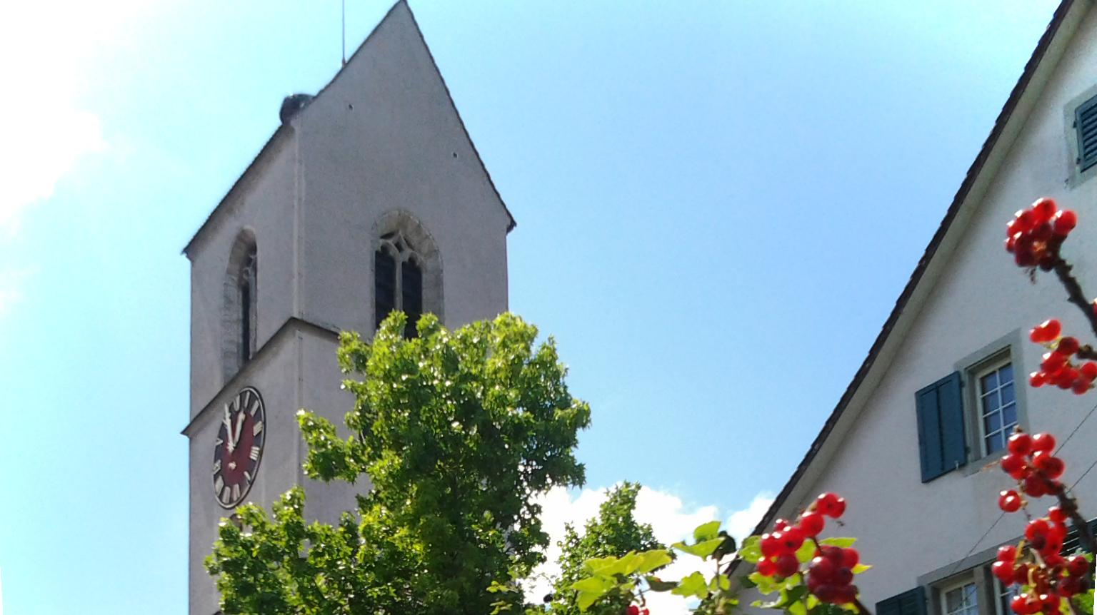 140615_KirchturmMitJohannisbeeren2